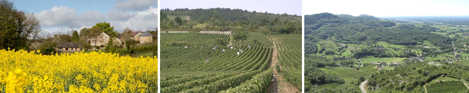 Agence sécurité en région Bourgogne Franche Comté | ATLANTIS SÉCURITÉ